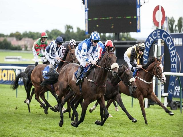 We're off to Ayr for all three of today's Follow The Money selections
